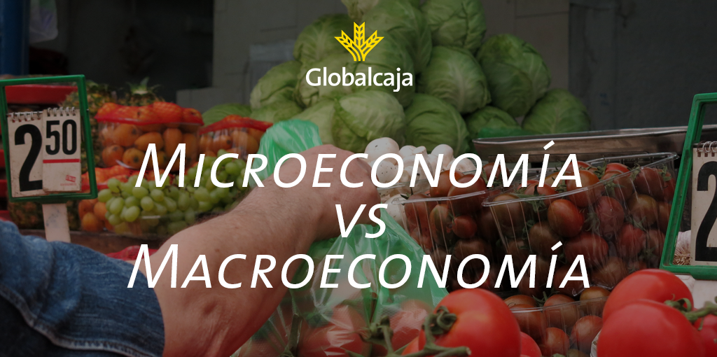 Diccionario Económico: Microeconomía y Macroecomía