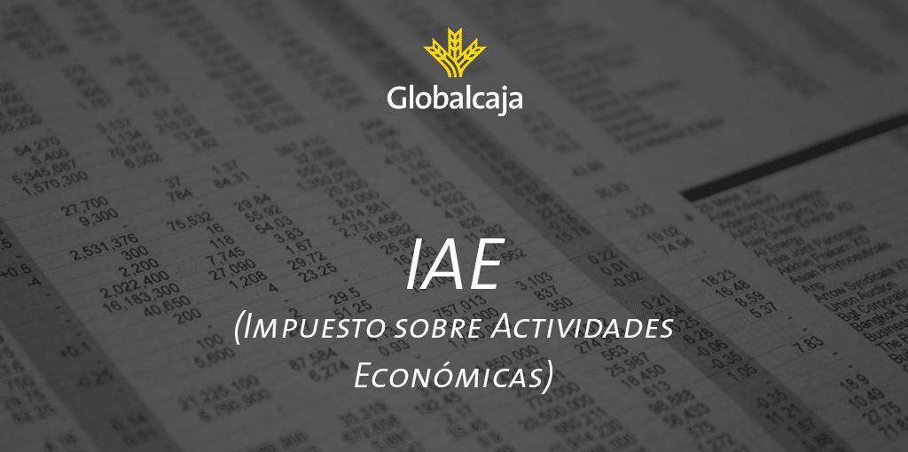 Diccionario Económico: Impuesto sobre Actividades Económicas (IAE)