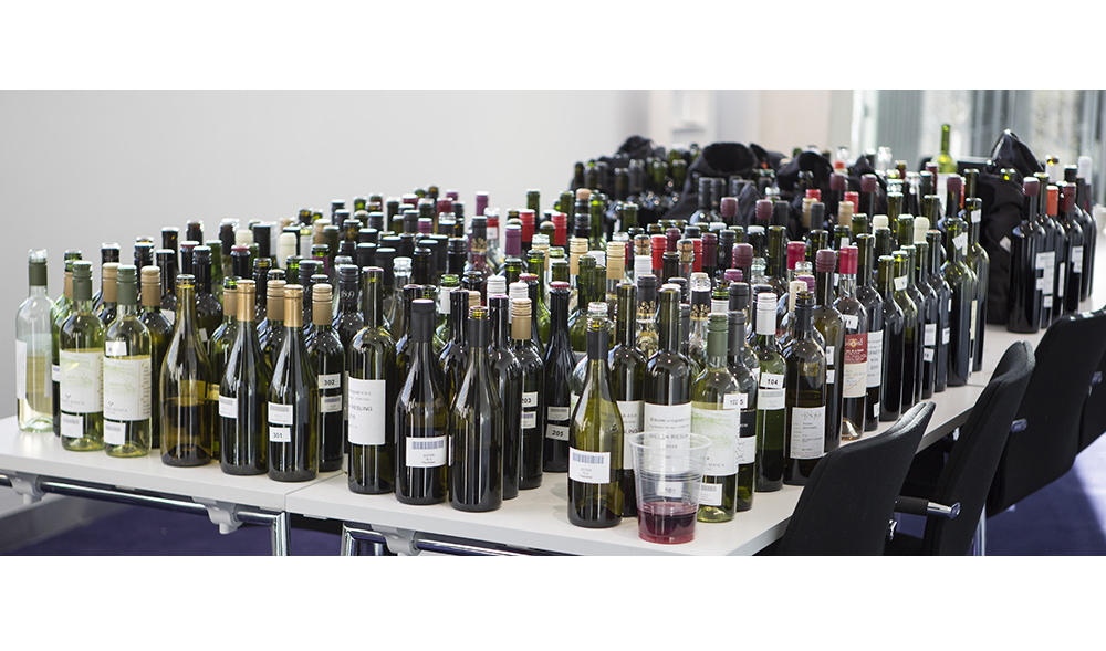https://blog.globalcaja.es/wp-content/uploads/2016/11/Exposición-de-vinos-para-catas.jpg