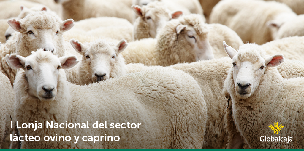 Globalcaja, patrocinador de la I Lonja Nacional del Sector Lácteo, Ovino y Caprino