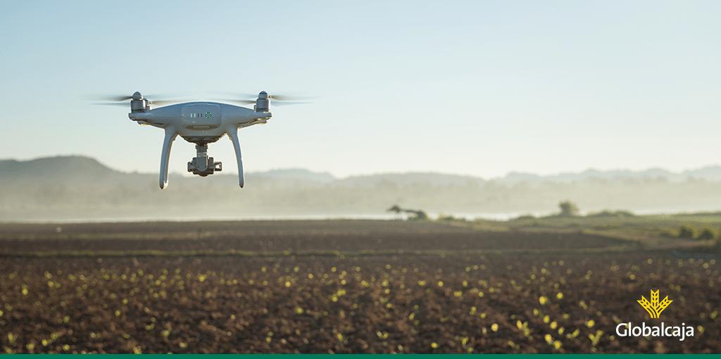 Uso de la tecnología del dron en agricultura
