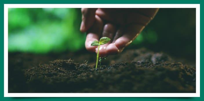 La conservación del suelo es beneficiosa para todos. Mediante medidas naturales y artificiales podemos recuperar o prevenir la degradación del suelo.