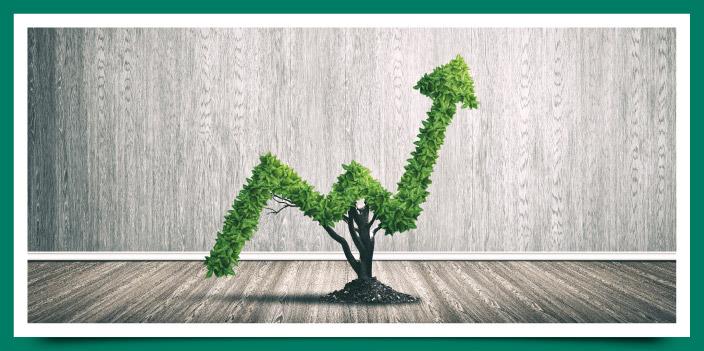 ¿Qué hacer para rentabilizar tu dinero?