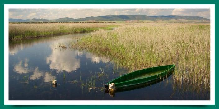 Parques Nacionales de Castilla – La Mancha