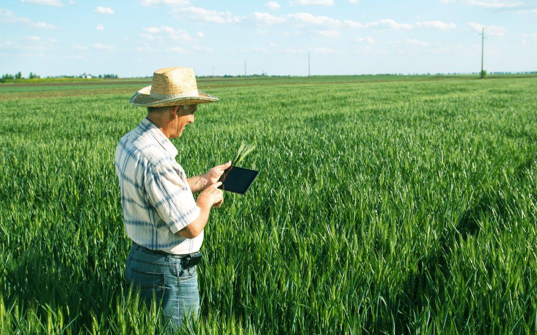 Big Data: La Revolución en la Agricultura