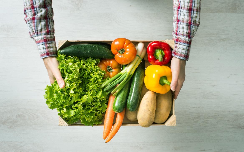 Gastronomía sostenible en España… ¿lo has probado?
