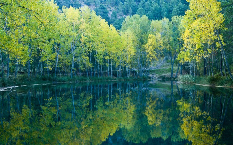 El oficio de ganchero y el transporte fluvial de madera serán declarados Bien de Interés Cultural
