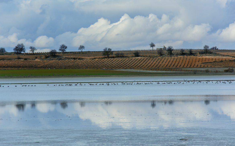 Viaja por Castilla-La Mancha a través de sus pantanos
