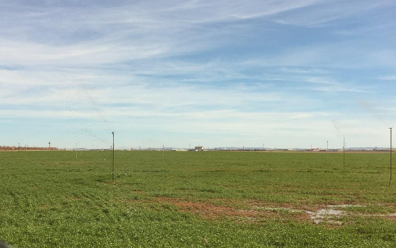 https://blog.globalcaja.es/wp-content/uploads/2018/11/Ayudas-Agricultura-CLM-.jpg