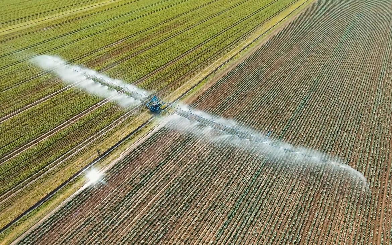 El papel del agua en la agricultura y cómo hacer un uso más eficiente de los recursos hídricos