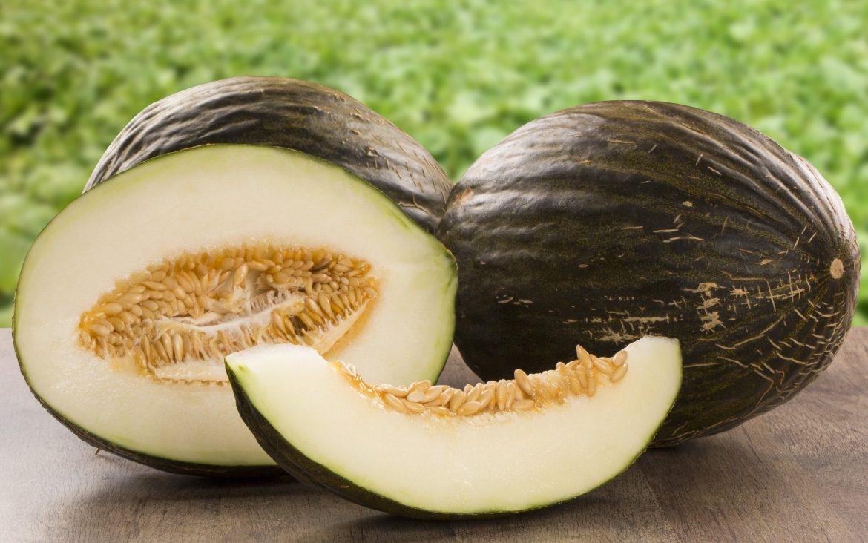 El melón de La Mancha, uno de nuestros cultivos característicos