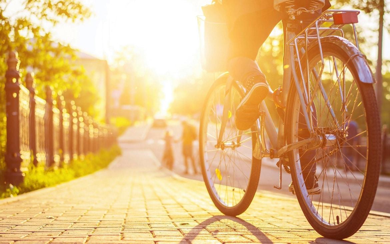 ¿Cómo podemos vivir de forma más sostenible?