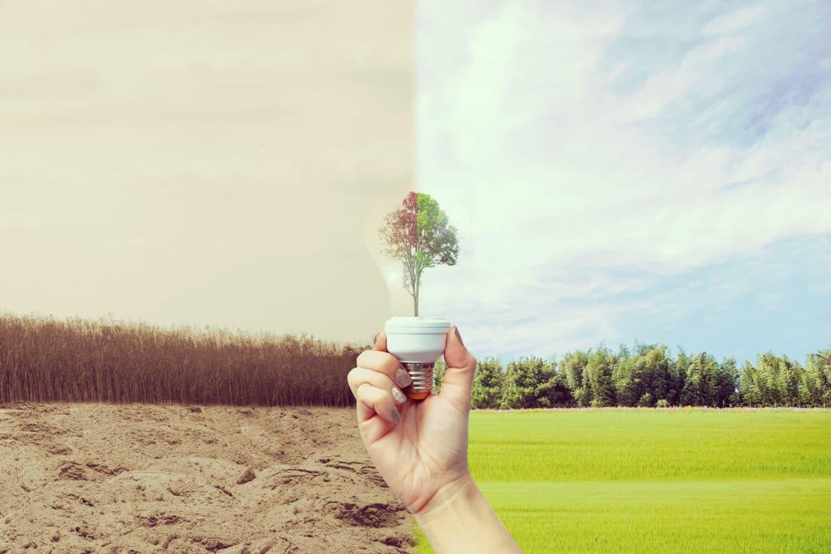 5 hábitos para reducir la contaminación del aire