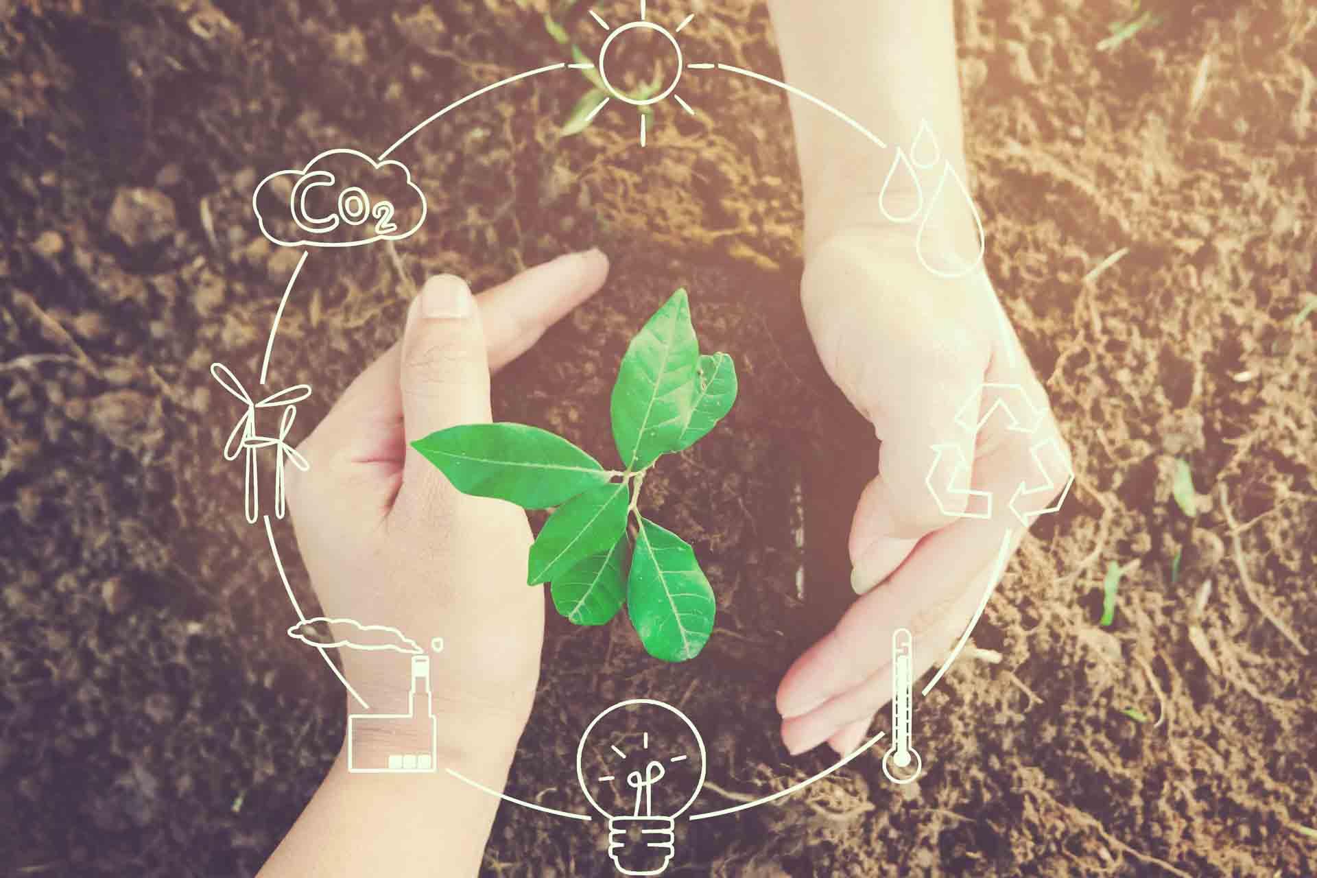 Descubre el foro Cuenca Business Market y da alas a tu negocio sostenible