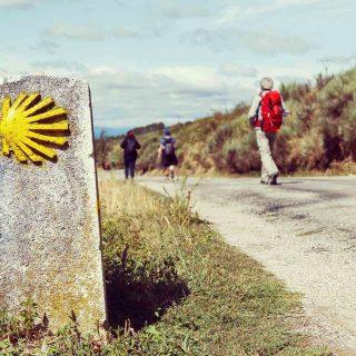 Este año, vive el Camino de Santiago y el Año Xacobeo empezando por Castilla-La Mancha